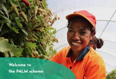 Pacific Australia Labour Mobility (PALM) Scheme